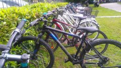 a_scuola_in_bicicletta_02.jpg